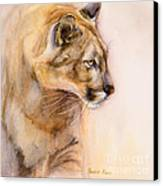 Cougar On The Prowl Canvas Print by Bonnie Rinier