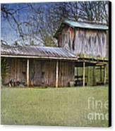 Country Life Canvas Print by Betty LaRue