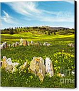Countryside With Stones Canvas Print by Carlos Caetano