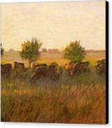 Cows1 Canvas Print by J Reifsnyder