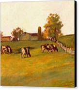 Cows2 Canvas Print by J Reifsnyder