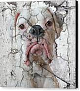Cracking Up Canvas Print by Judy Wood