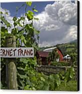 Crane Creek Vineyard Canvas Print by Debra and Dave Vanderlaan