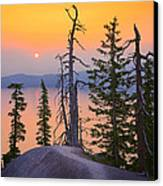 Crater Lake Trees Canvas Print by Inge Johnsson