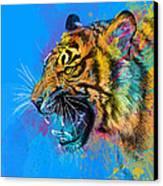 Crazy Tiger Canvas Print by Olga Shvartsur
