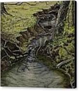 Creek  Canvas Print by Janet Felts