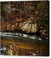 Creek Canvas Print by Mario Celzner