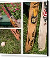 Cricket Series Canvas Print by Tom Gari Gallery-Three-Photography