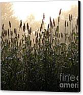Crops In Fog Canvas Print by Olivier Le Queinec