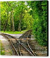 Crossing The Lines Canvas Print by Joy Hardee