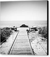 Crystal Cove Overlook Black And White Picture Canvas Print by Paul Velgos