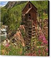 Crystal Mill Wildflowers Canvas Print by Adam Jewell