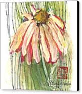 Daisy Girl Canvas Print by Sherry Harradence