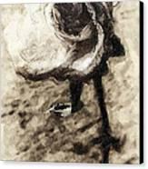 Dancing Rose Canvas Print by Ron Regalado