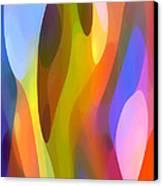 Dappled Light 3 Canvas Print by Amy Vangsgard