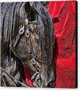 Dark Horse Against Red Dress Canvas Print by Jennie Marie Schell
