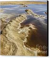 Dead Sea Landscape Canvas Print by Dan Yeger