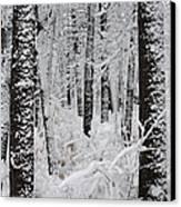 Deep Snow In The Forest Canvas Print by Lynn-Marie Gildersleeve