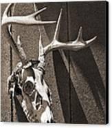 Deer Skull In Sepia Canvas Print by Brooke Ryan
