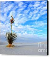 Desert Beauty White Sands New Mexico Canvas Print by Bob Christopher