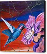 Desert Hummingbird - Study No. 1 Canvas Print by Steve Bogdanoff