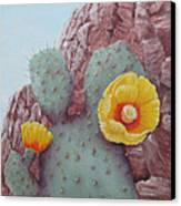 Desert Rose Canvas Print by Roseann Gilmore