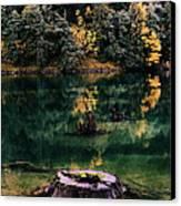 Diablo Lake Tree Stump Canvas Print by Benjamin Yeager