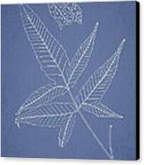 Dictyopteris Barberi Canvas Print by Aged Pixel