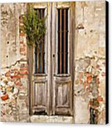 Dilapidated Brown Wood Door Of Portugal Canvas Print by David Letts