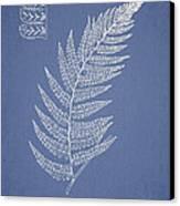 Diplazium Griffithii Canvas Print by Aged Pixel