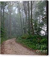 Dirt Path In Forest Woods With Mist Canvas Print by Olivier Le Queinec