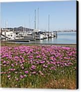 Docks At Sausalito California 5d22695 Canvas Print by Wingsdomain Art and Photography
