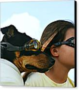 Dog Is My Co-pilot Canvas Print by Laura Fasulo