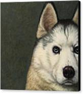 Dog-nature 9 Canvas Print by James W Johnson