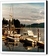 Domino At Alderbrook On Hood Canal Canvas Print by Jack Pumphrey