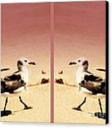 Double Gulls Collage Canvas Print by Susanne Van Hulst