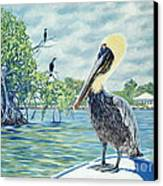 Down In The Keys Canvas Print by Danielle  Perry