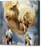 Dream Catcher - Spirit Of The White Buffalo Canvas Print by Carol Cavalaris