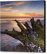 Driftwood On The Beach Canvas Print by Debra and Dave Vanderlaan