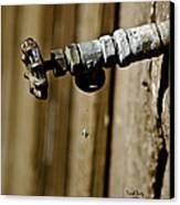 Drip...drip...drip...drip Canvas Print by Trish Tritz