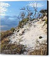 Dunes Of Santa Rosa Island Canvas Print by JC Findley