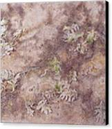 Early Fall Canvas Print by Michele Myers