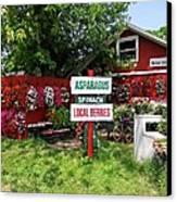 East End Farmstand Canvas Print by Ed Weidman