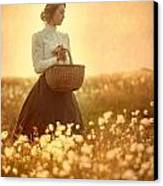 Edwardian Woman In A Meadow At Sunset Canvas Print by Lee Avison