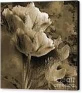 Elegance Canvas Print by Yanni Theodorou