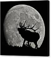Elk Silhouette On Moon Canvas Print by Ernie Echols