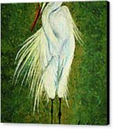 Ellie Egret Canvas Print by Adele Moscaritolo
