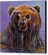 Embarrassed Canvas Print by Bob Coonts