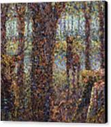 Encounter Canvas Print by James W Johnson