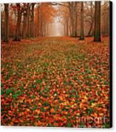 Endless Autumn Canvas Print by Photodream Art